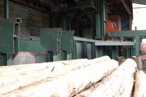 剥かれた木の皮は、粉砕木にかけ堆肥として利用しています。