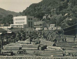 昭和30年10月 第1回木材市売